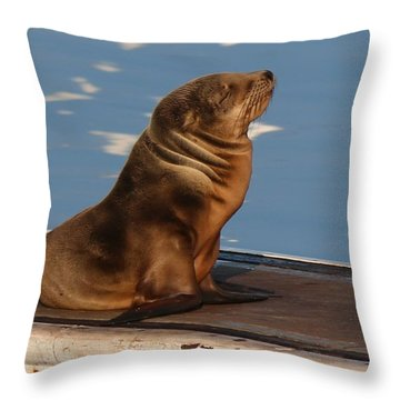 Wild Pup Sun Bathing - 2 Throw Pillow