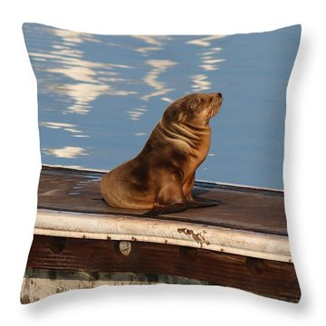 Throw Pillow featuring the photograph Wild Pup Sun Bathing by Christy Pooschke
