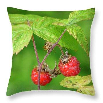 Wild Raspberries Throw Pillow by Lew Davis