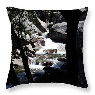 Wild River Throw Pillow by Brian Williamson
