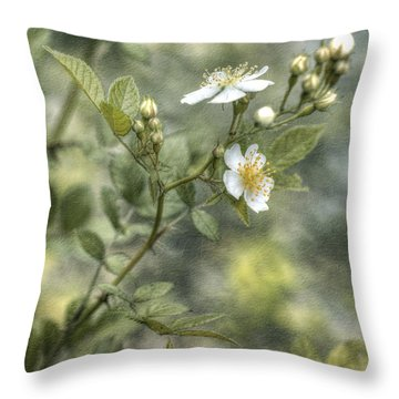Wild Rose Throw Pillow by Kathleen Holley
