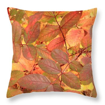 Throw Pillow featuring the photograph Wild Rose Leaves In Autumn by Jim Sauchyn
