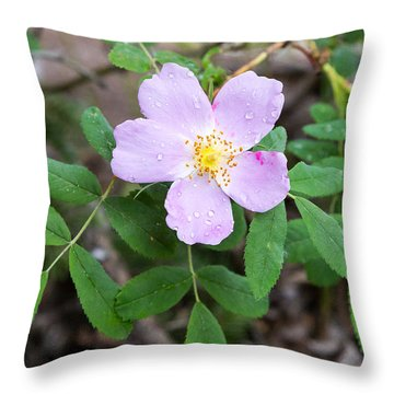 Wild Gentian Throw Pillow