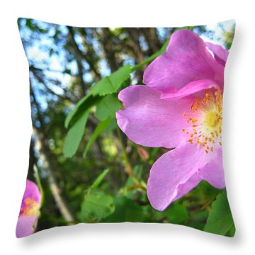 Wild Rose Throw Pillow by Shirley Sirois