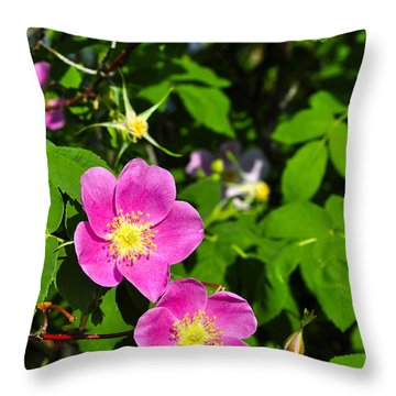 Throw Pillow featuring the photograph Wild Roses by Cathy Mahnke