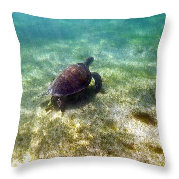 Throw Pillow featuring the photograph Wild Sea Turtle Underwater by Eti Reid