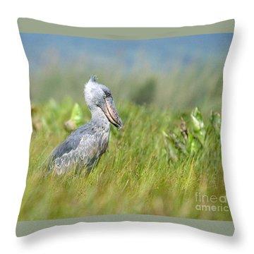 Throw Pillow featuring the photograph Wild Shoebill Balaeniceps Rex  by Liz Leyden