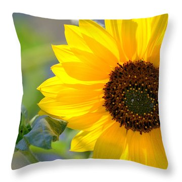 Throw Pillow featuring the photograph Wild Sunflower by Nadalyn Larsen