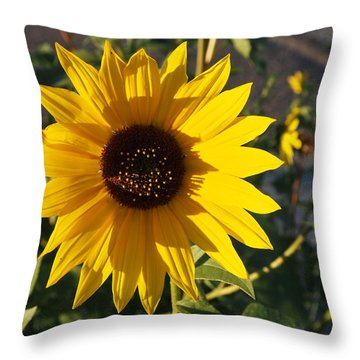 Wild Sunflower Throw Pillow