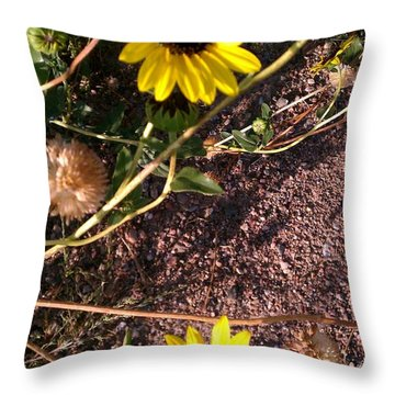 Throw Pillow featuring the photograph Wild Sunflowers by Fortunate Findings Shirley Dickerson