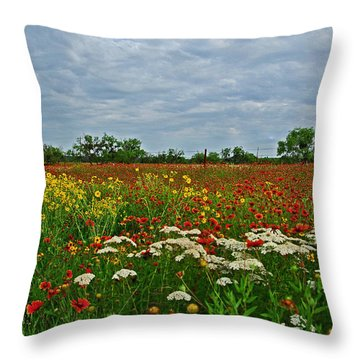 Wild Texas Throw Pillow