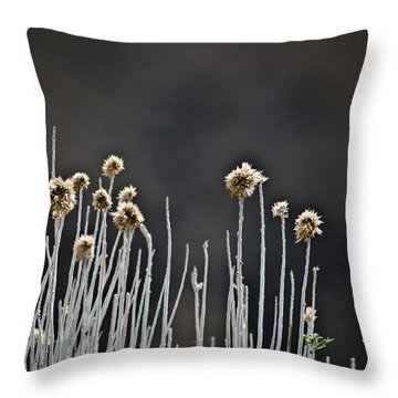 Wild Things 1 Throw Pillow