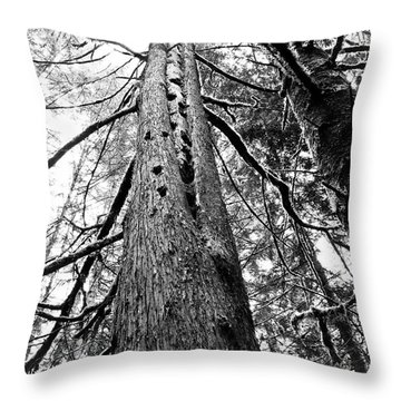 Wild Things Hotel Throw Pillow by Adria Trail