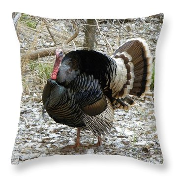 Wild Turkey Mnt Zion Ut Throw Pillow