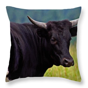 Throw Pillow featuring the painting Wild Type Colored Heifer Longhorn Cow by Karon Melillo DeVega