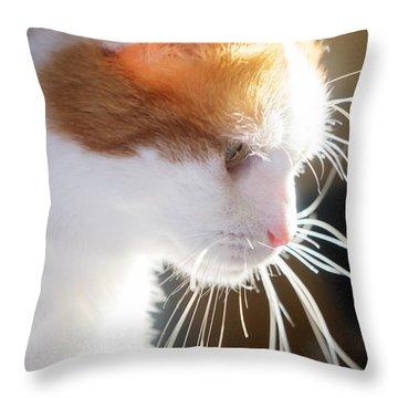 Wild Whiskers Throw Pillow
