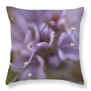 Wild Wildflower Throw Pillow
