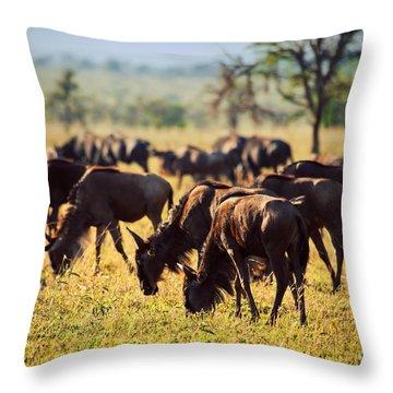 Wildebeests Herd. Gnu On African Savanna Throw Pillow by Michal Bednarek