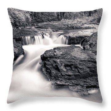 Wilderness River Throw Pillow