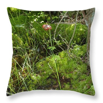 Throw Pillow featuring the photograph Wildflower 1 by Robert Nickologianis