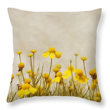 Wildflower Daisies Throw Pillow by Kim Hojnacki