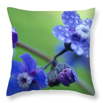 Wildflower In The Rain Throw Pillow by Kathy Yates