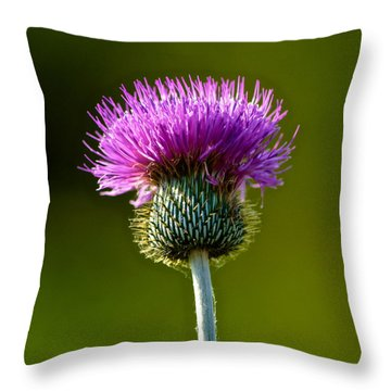 Wildflower Macro Throw Pillow