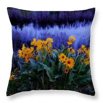 Wildflower Reflection Throw Pillow by Dan Sproul