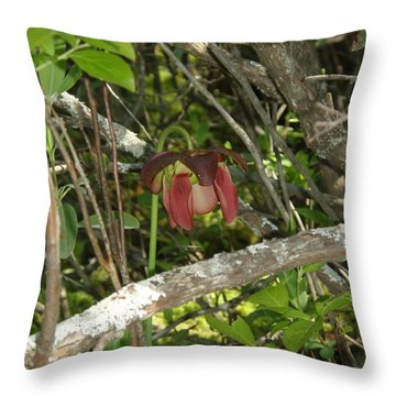 Throw Pillow featuring the photograph Wildflower by Robert Nickologianis