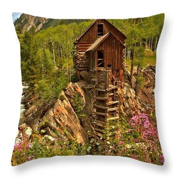 Wildflower Wonderland Throw Pillow by Adam Jewell