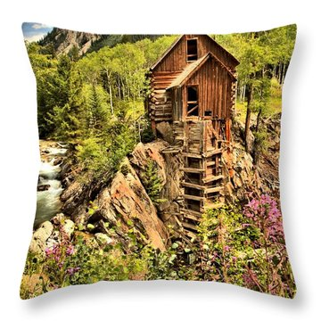 Wildflowers And History Throw Pillow by Adam Jewell