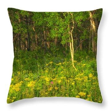 Wildflowers Glacier National Park Montana Throw Pillow by Ram Vasudev
