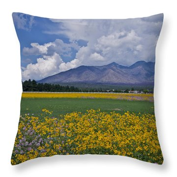 Wildflowers In Flag 9611 Throw Pillow