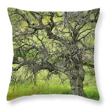 Wildflowers Under Oak Tree - Spring In Central California Throw Pillow