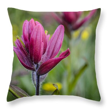 Wildflowers5 Throw Pillow by Aaron Spong