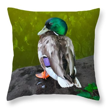 Wildlife In Central Park Throw Pillow