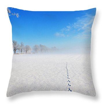 Wildlife Tracks Throw Pillow