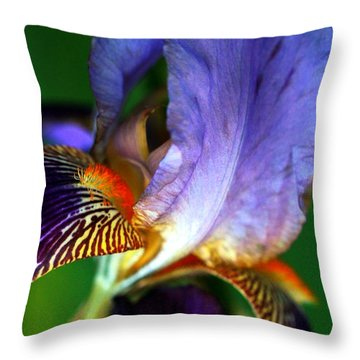 Wildly Colorful Throw Pillow