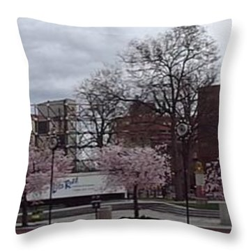 Wilkes-barre In Bloom Throw Pillow