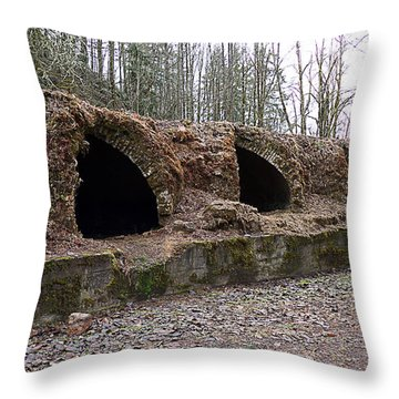 Wilkeson Coke Ovens Throw Pillow by Ron Roberts