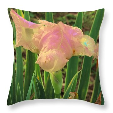 Will Iris Open Tomorrow Throw Pillow