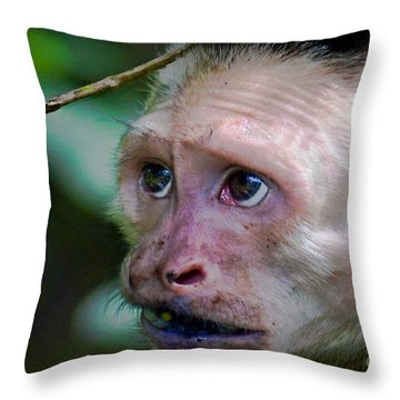 Will Work For Food Throw Pillow by Gary Keesler