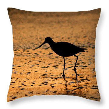 Ponte Vedra Willet Throw Pillow