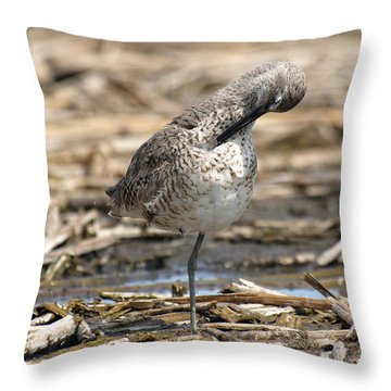 Willet Throw Pillow by James Peterson