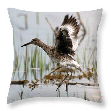 Willet Taking Flight Throw Pillow