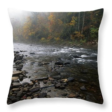 Williams River Autumn Mist Throw Pillow by Thomas R Fletcher