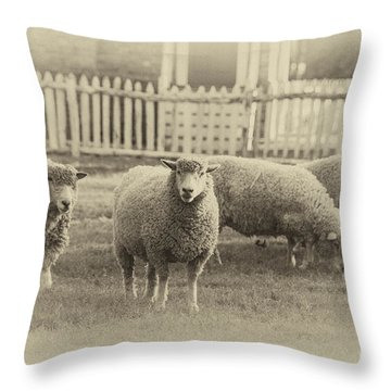 Williamsburg Sheep Throw Pillow