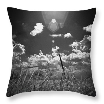 Throw Pillow featuring the photograph Willow by Bradley R Youngberg