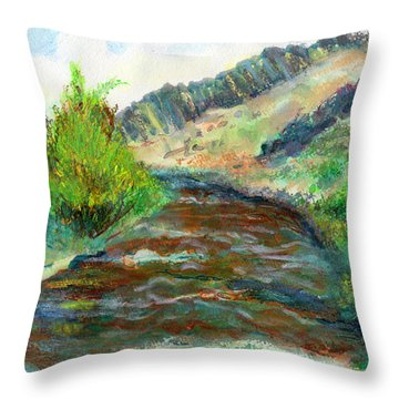 Willow Creek In Spring Throw Pillow