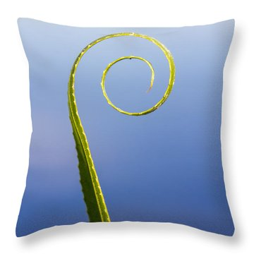 Willow Leaf Spiral Throw Pillow